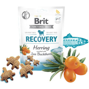 BRIT Dog Functional Snack Recovery Herring 150g