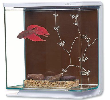 Akvárium Marina Betta Kit Contemporary 3 l